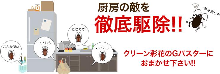 厨房の敵を徹底駆除!!